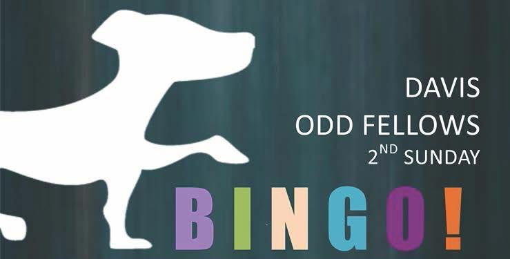 Odd Fellows Bingo Banner